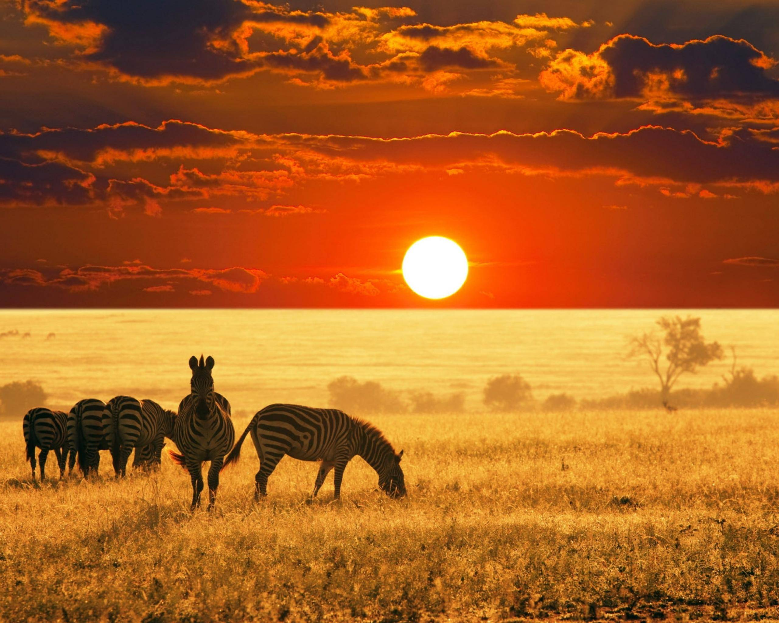 Beautiful-Africa