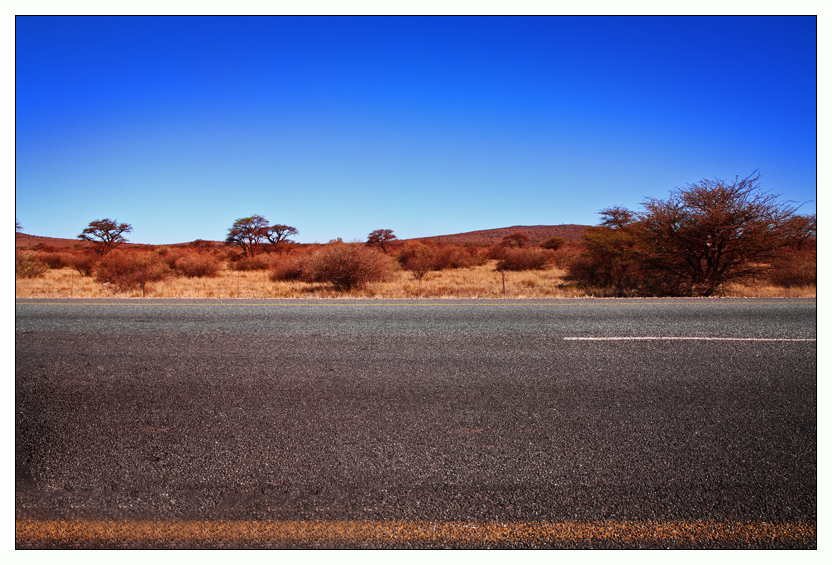Kalahari Fun Facts | Africa Facts