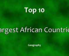 Top 50 Richest Africans | Africa Facts